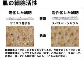 たきのミスト04.jpg